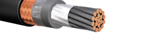 HW263: 2kV Single Conductor Power Cable, Armored & Sheathed